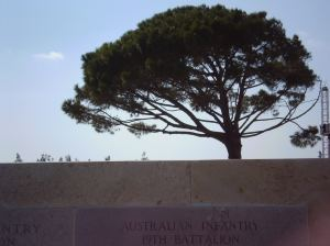 The Lone Pine:    Ironically, not the original pine after which the hill is named. This one was planted in honor of that Lone Pine that remained after the bloodiest battle in the entire campaign.