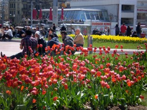 Taksim Square: the tulips were in bloom and they were gorgeous (hint: expect to see many more pics of tulips!)