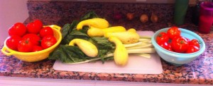 nothing says delicious like fresh veggies from the garden!