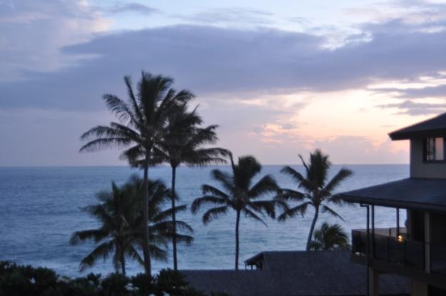 Hawaii 356