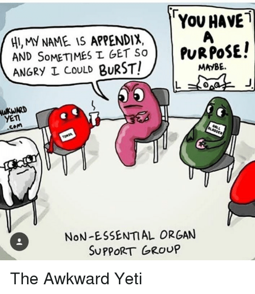 angry appendix
